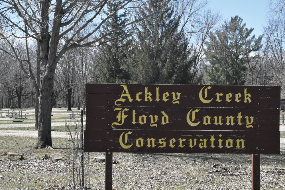 Plant a tree with Floyd County Conservation